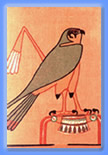 falcon image on papyrus